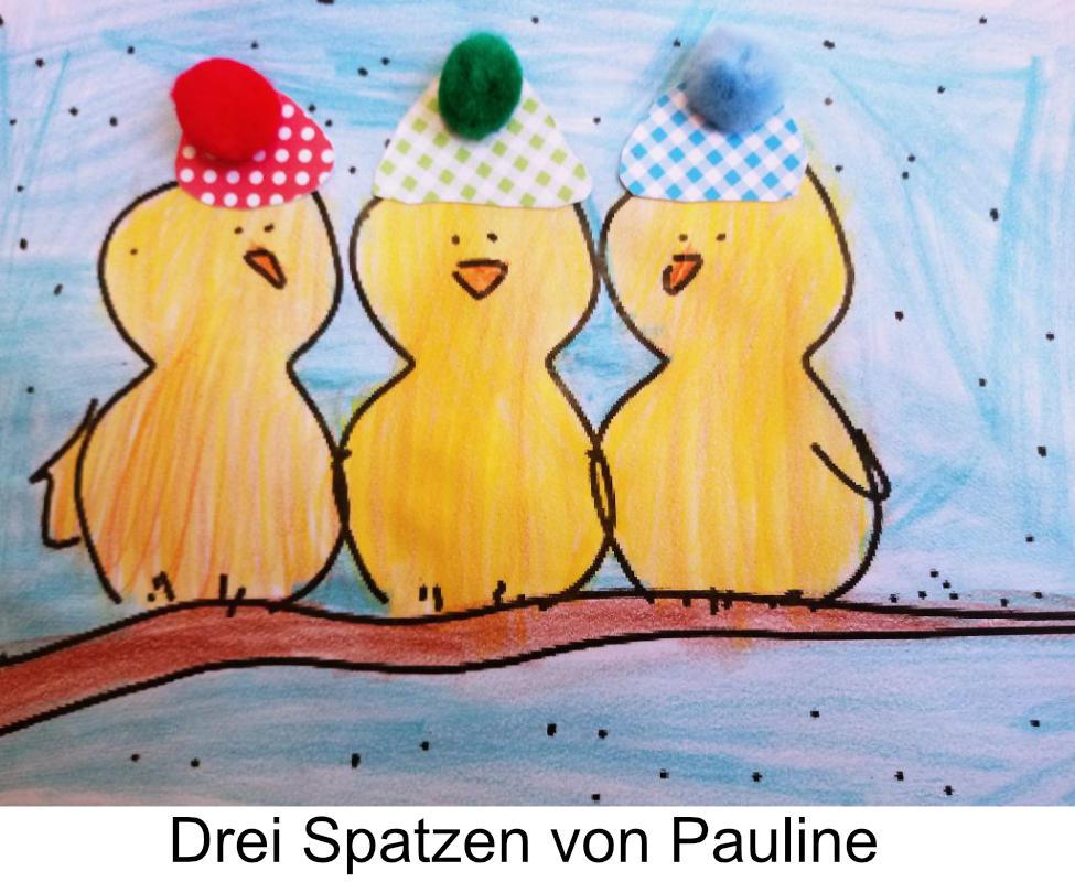 Spatzen_Pauline